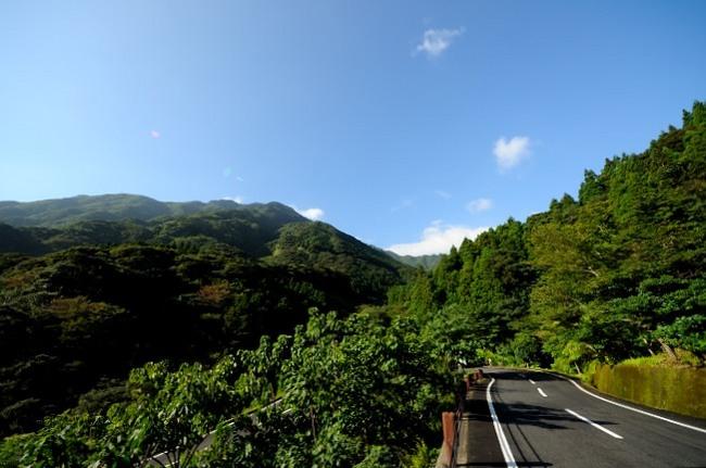 屋久島旅行記_014.JPG