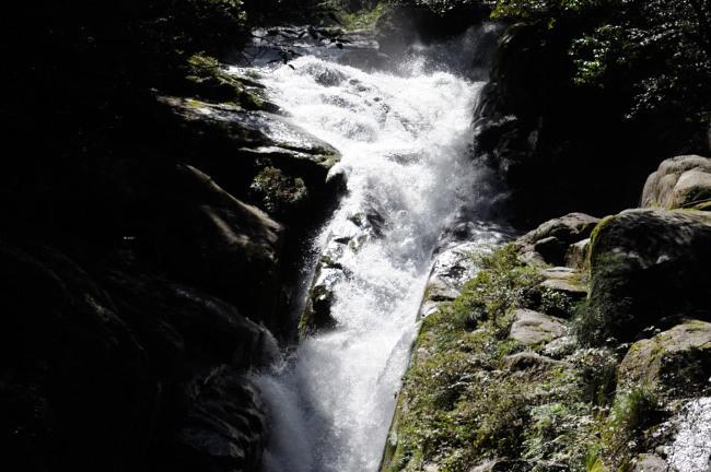 白谷雲水峡トレッキング 川の流れ.jpg
